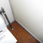 トイレ内部壁面に発生したカビ処理です。
