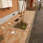 共用部分の清掃です。(横浜市)